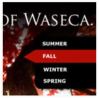 Waseca, MN Website Design and Branding